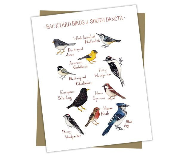 Wholesale Backyard Birds Field Guide Cards: South Dakota