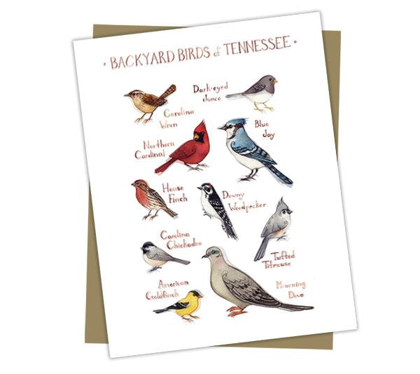 Wholesale Backyard Birds Field Guide Cards: Tennessee