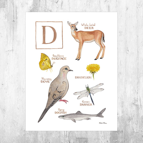 Wholesale Field Guide Art Print: The Letter D