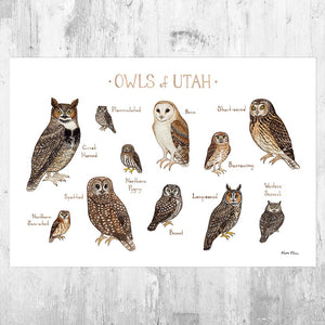 Wholesale Owls Field Guide Art Print: Utah