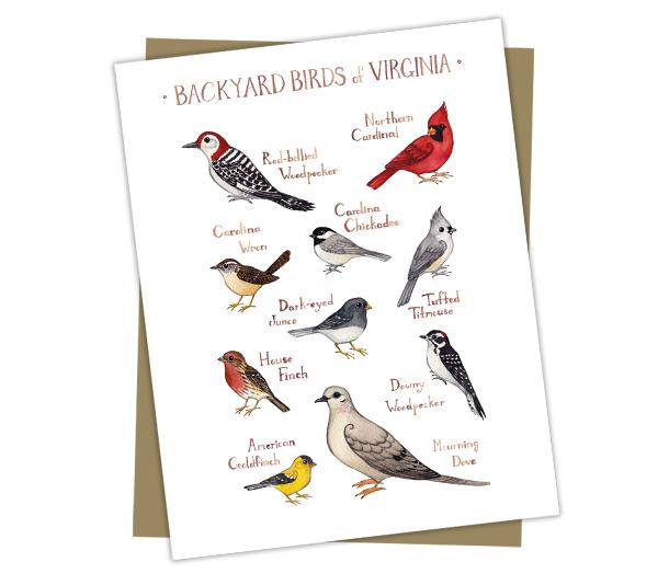 Wholesale Backyard Birds Field Guide Cards: Virginia