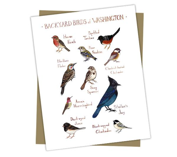 Wholesale Backyard Birds Field Guide Cards: Washington