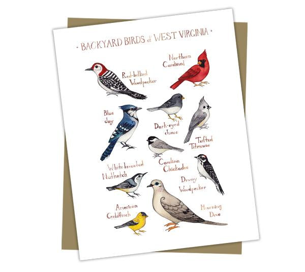 Wholesale Backyard Birds Field Guide Cards: West Virginia