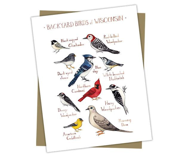 Wholesale Backyard Birds Field Guide Cards: Wisconsin