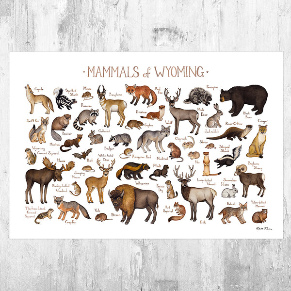 Wholesale Mammals Field Guide Art Print: Wyoming
