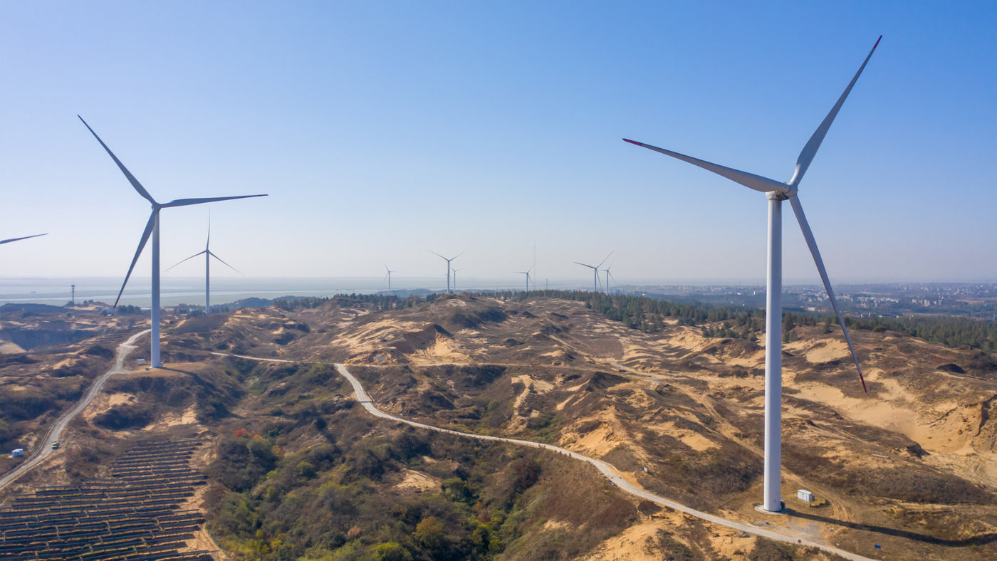 How Did Mexico Unlock Its Wind Energy Potential?