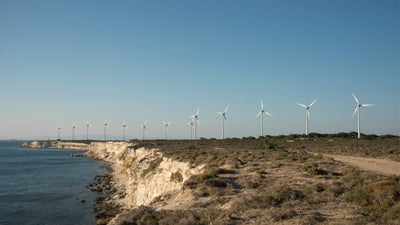 Positive Outlook for Renewable Energy in the Caribbean