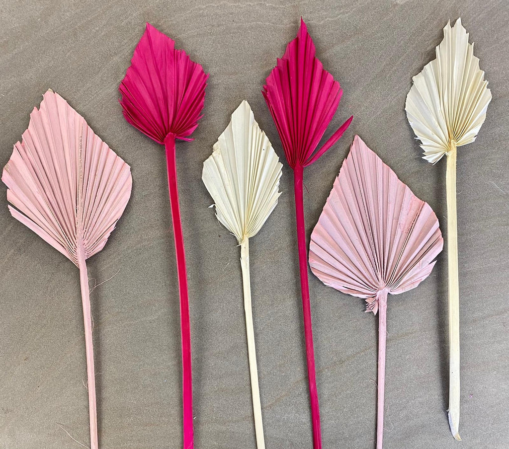 Pink mix Palmspears
