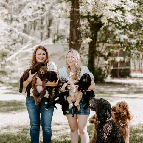 Lucy Drew and Puppies