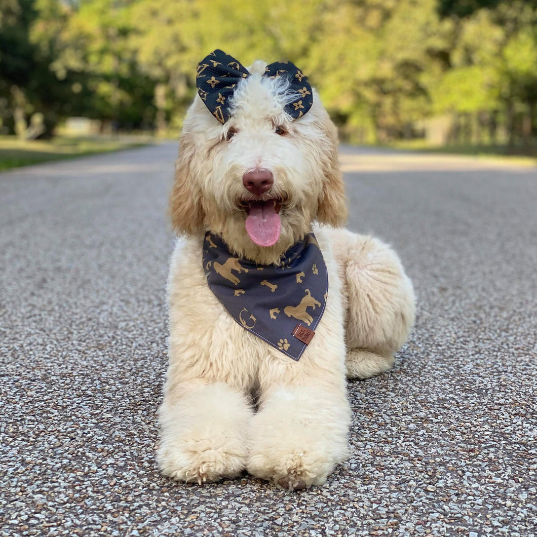 Luxury Goldendoodle Dog Bandana