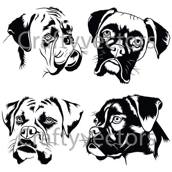 Boxer Dog Vector