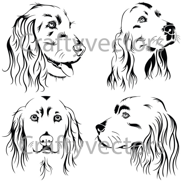 Cocker Spaniel Dog Vector