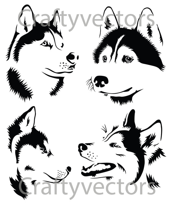 Husky Dog Vector