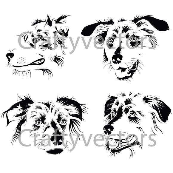 Australian Shepherd Dog Vector