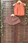 kidswear - multi color shorts with peach top