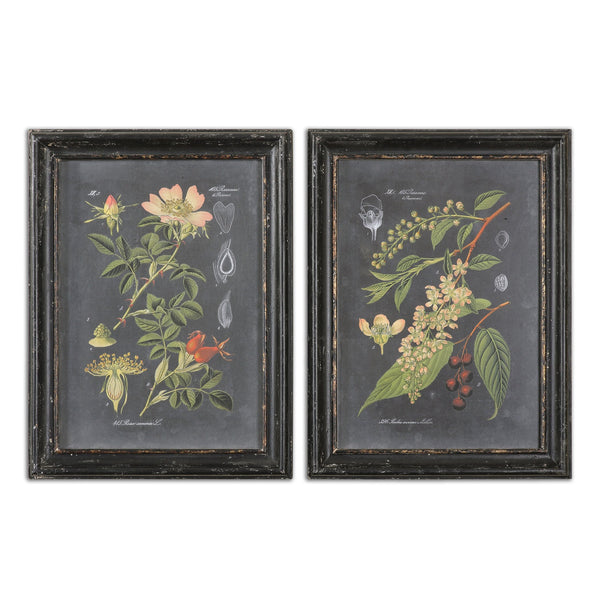 Uttermost Midnight Botanicals Wall Art S/2 56053 - BathVault