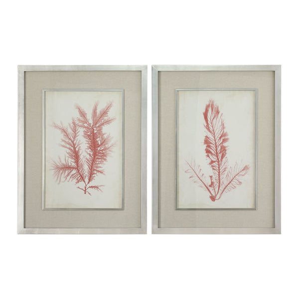 Uttermost Coral Sea Feathers Prints S/2 41578 - BathVault