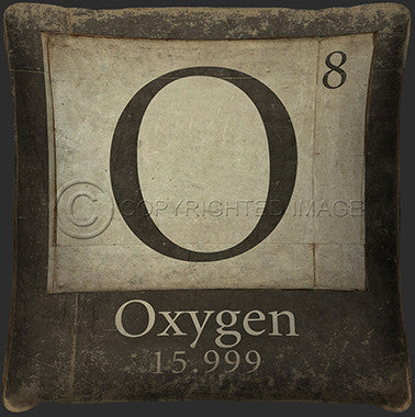 10123 Oxygen Element Pillow