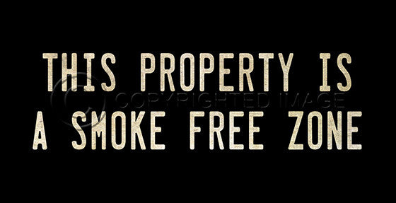10369 This Property Is A Smoke Free Zone Sign Framed Art