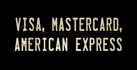 10376 Visa, Mastercard, American Express Sign Framed Art