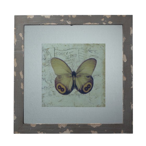 Distressed Grey Picture Frame With Butterfly Print by Sterling