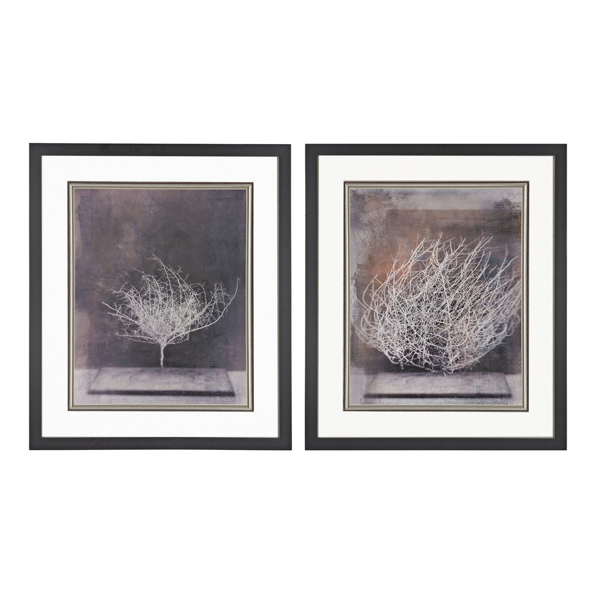 Desert Form V, VI - Print Under Glass  by Sterling
