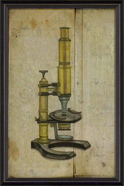 18412 BC Seibert Microscope Framed Art
