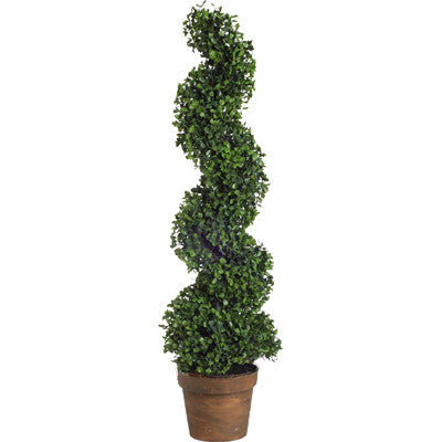 Boxwood Tree 58147 by A&B Home