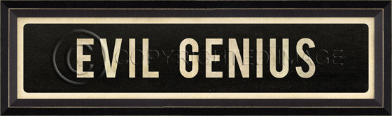 80797 BC Evil Genius Street Sign Framed Art