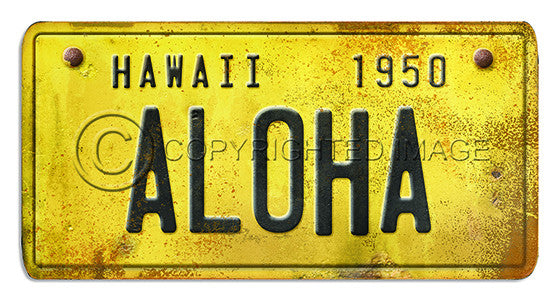 81105 Hawaii License Plate ALOHA Framed Art