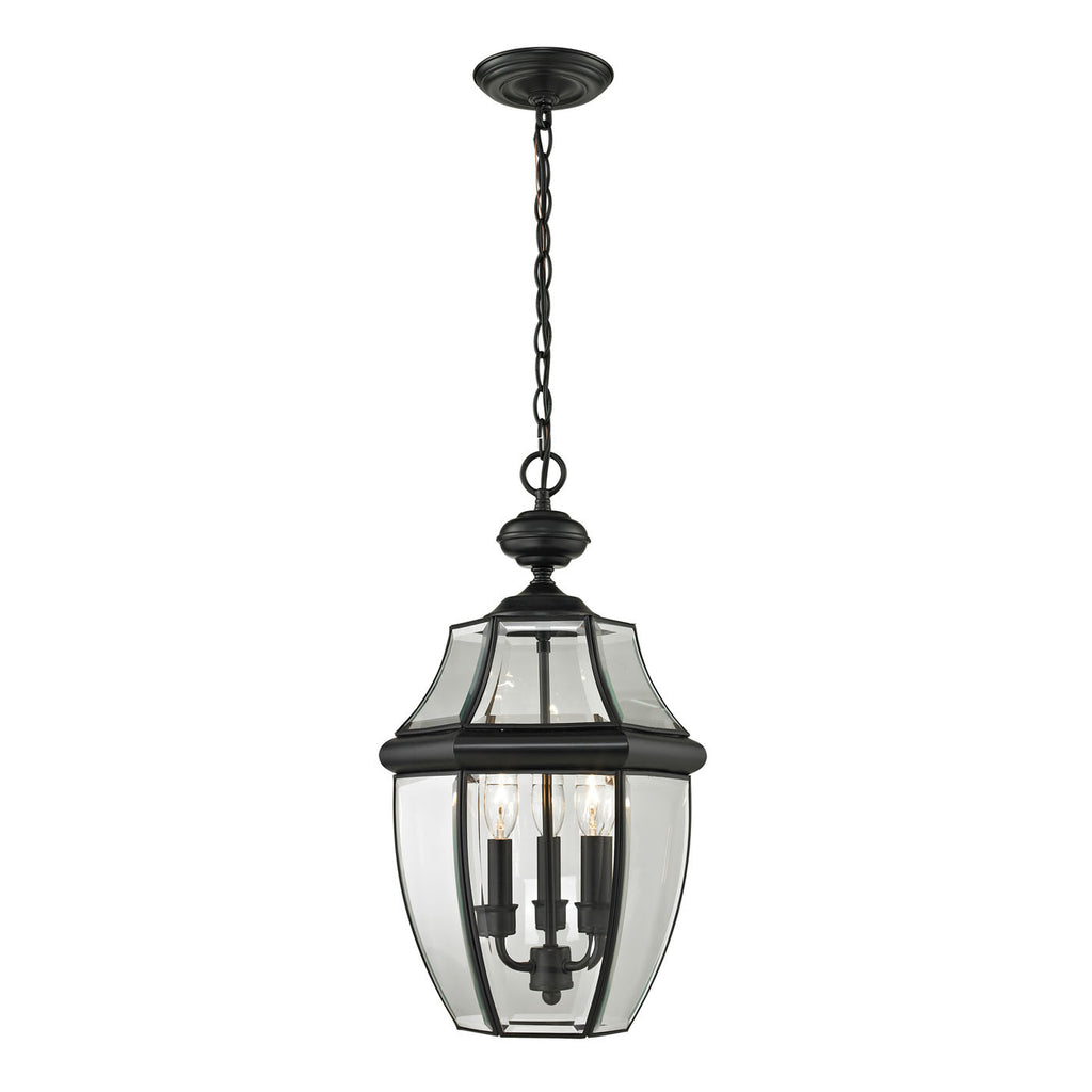 Ashford 3 Light Exterior Hanging Lantern In Black 8603EH/60 by Thomas Lighting