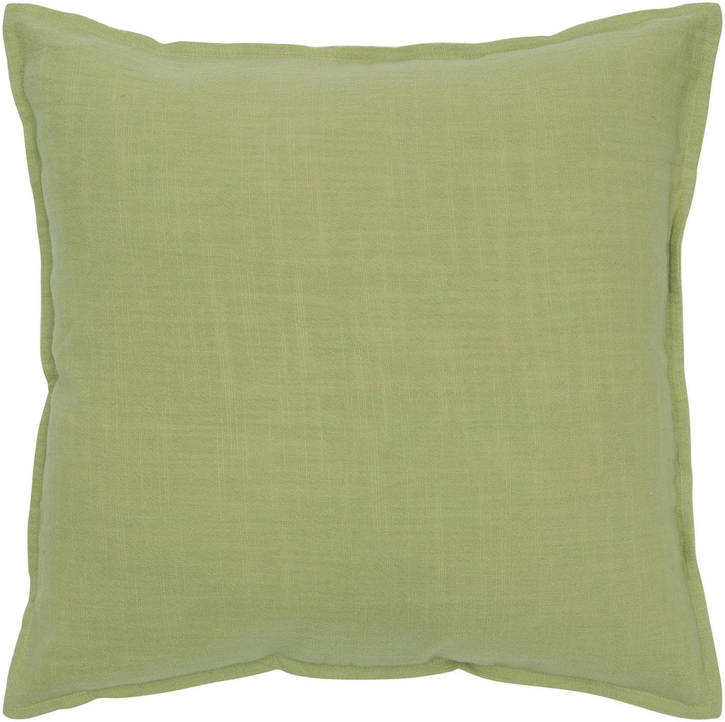 Decorative Accent Pillow T05679