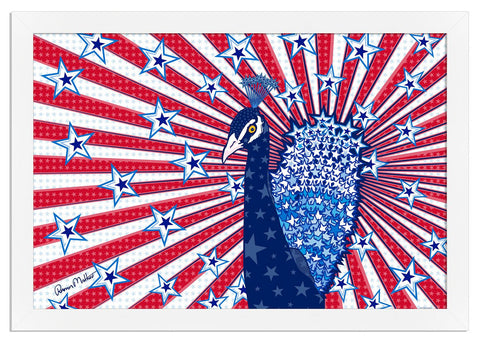IP14564 Star Spangled Peacock