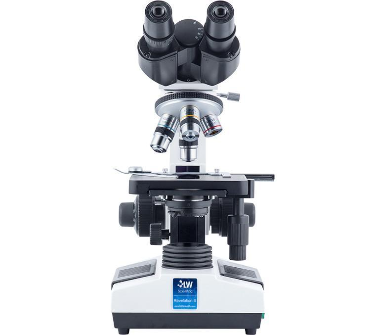 Compound Microscope Basics