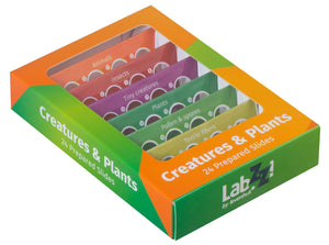 Levenhuk LabZZ CP24 Creatures & Plants Prepared Slides Set - LabEssentials, Inc.