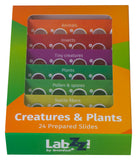 Levenhuk 2L Plus and CP24 Prepared Slide Kit - LabEssentials, Inc.