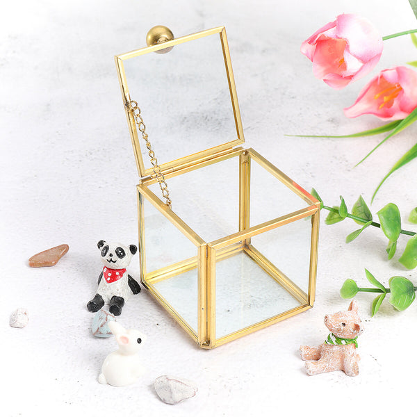 Square Glass Jewelry Box Vintage Wedding Favors Geometrical Clear Earring Ring Case Flower Succulent Plants Display Box