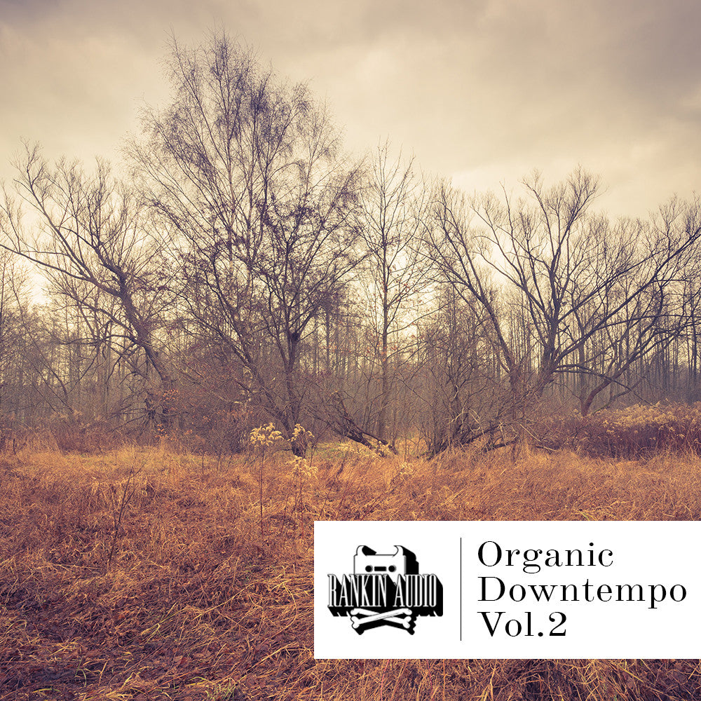 Organic Downtempo Vol 2