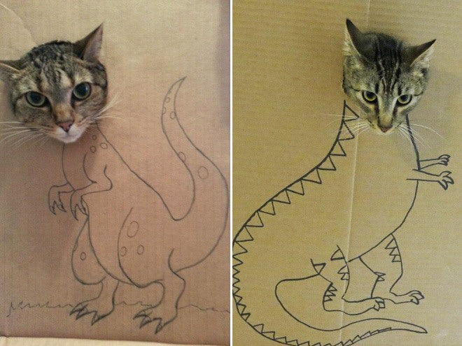 People Are Using Cardboard Boxes To Turn Their Cats Into Dinosaurs, And The Results Are Hilarious