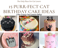 15 Purr-Fect Cat Birthday Cake Ideas ( For Crazy Cat Lovers Only)