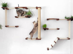 Minimalist Modular Systems Turn Walls Into Feline Playgrounds