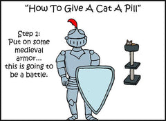 Hilarious 10-Step Guide Goes To Extreme Lengths Explaining How To Give a Cat a Pill