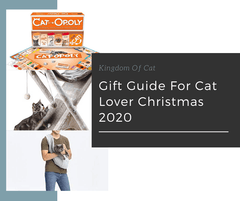 Gift Guide To Cat Lovers and Owner Christmas 2020