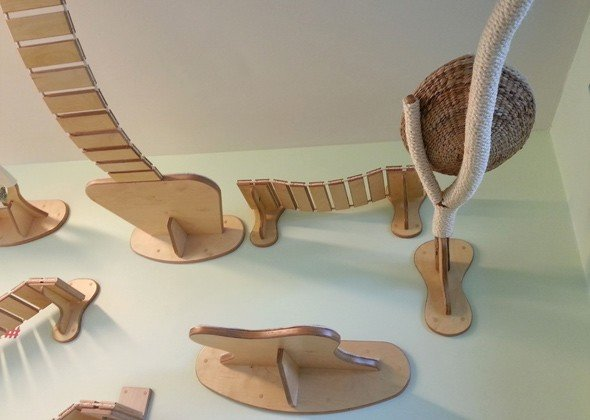 Amazing Playgrounds for Cats