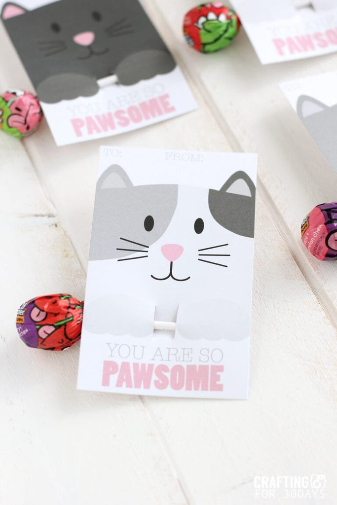 The Cutest and Creative Cat Valentine Cards 2021