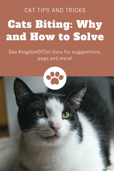 Cats Biting: Why and How to Solve