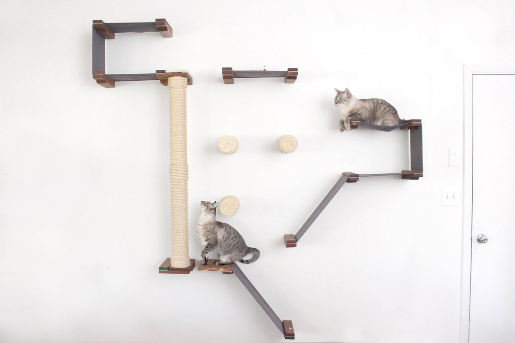 cat Playgrounds