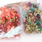 1 box mixed dried flowers