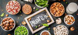Top 10 Improvised Emergency Protein Sources (For When All Else Fails) - Be Prepared - Emergency Essentials