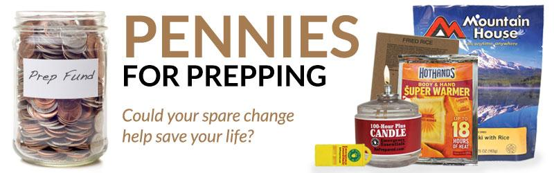 Pennies for Prepping: February 2013 Results
